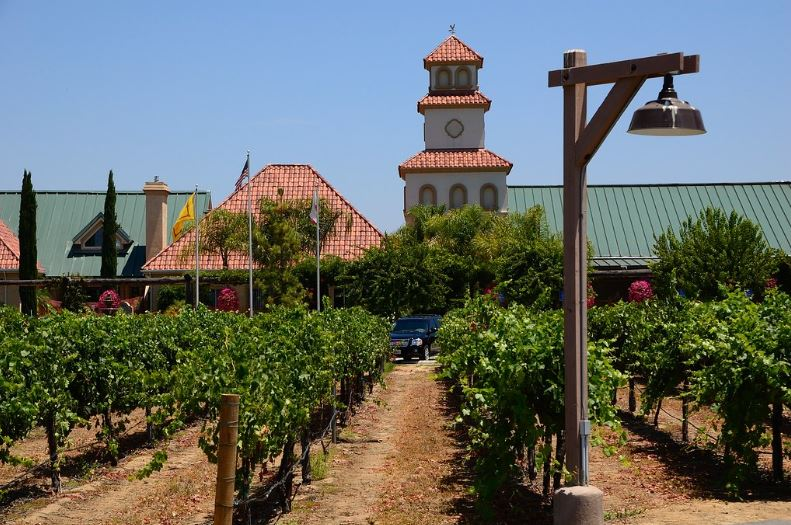 Enjoy the Fun of Wine Tours Services in Los Angeles